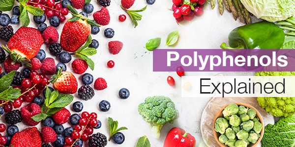 082019-Polyphinols-Explained-Email-3